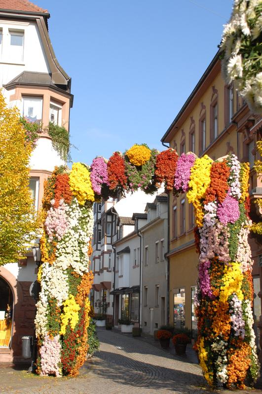 Lahr Germany - 2008 Chrysanthema festival, flower arch