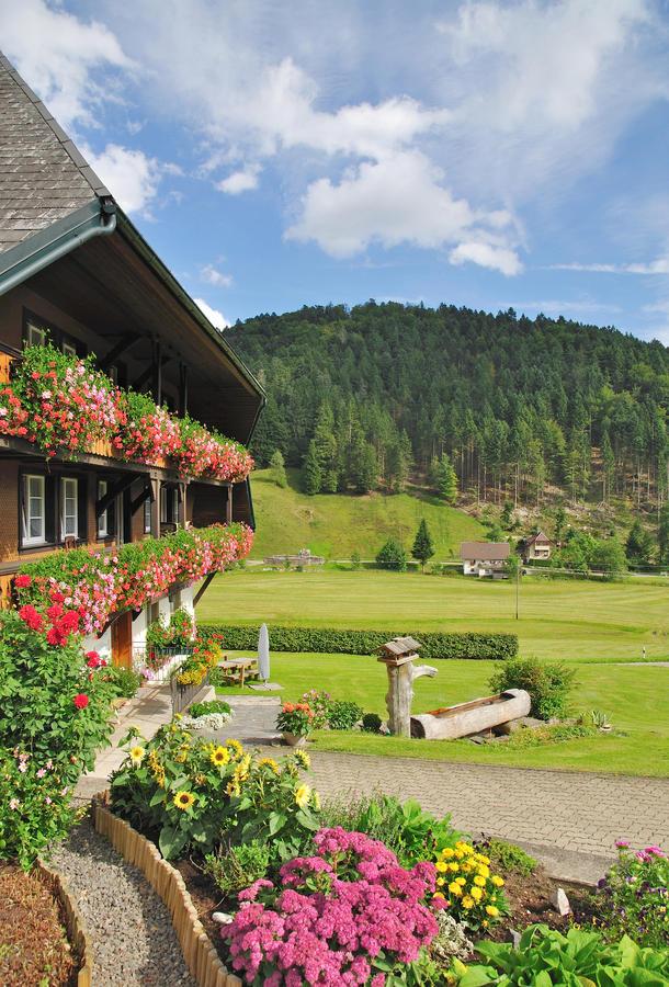 Schwarzwald -