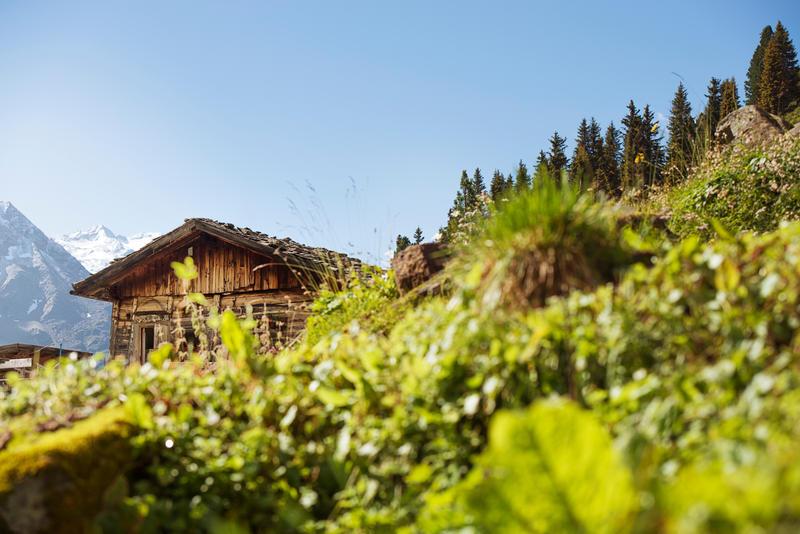 Stubaital - Urlaub in Tirol
