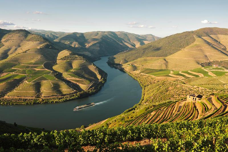 Douro Erlebnis - Diese Aussicht beschreiben? –  Da wird ein Blog zum Roman.